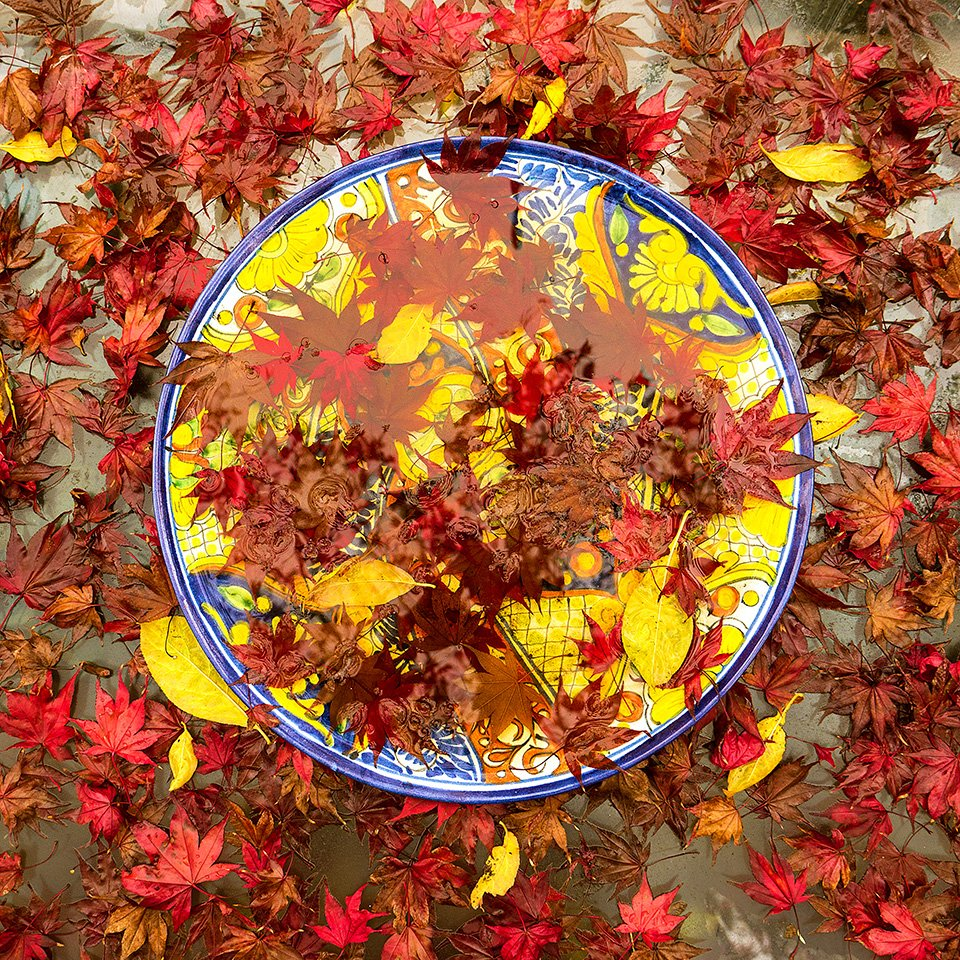 Plate with Autumn Leaves