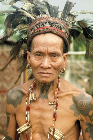 Old Warrior - Skrang River, Borneo
